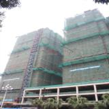 2月28日省直屏东城工程进度