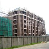 09年8月4日新仓山洋楼工程进度图