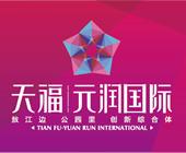 天福元润国际
